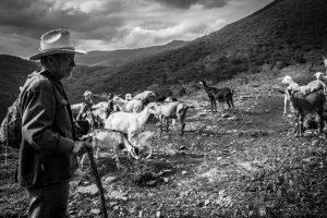 Foto: Abel Emigdio Bernal Padilla / Oaxaca.