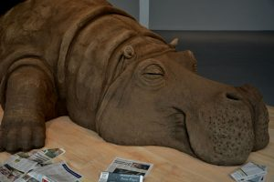 Portada-Hope Hippo-(2)-Foto INBA-1600x-3-min