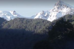 Portada-La devastación de un continente-Fotograma: Video Prensa Opal-1600x-min