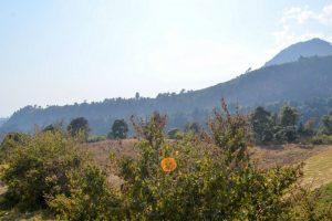 Portada-Tlanixco-Valentina Valle-SubVersiones-1600x-1-min
