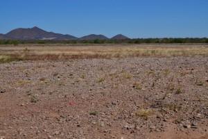Slider Desierto