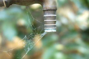 Portada-Agua-Escasez-Foto Pixabay-1600x-(2)-(1)