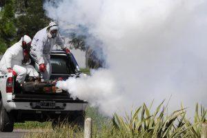Portada-Fumigación vs Dengue-Foto Rosario Noticias-1600x-(1)-(1)--https://www.rosarionoticias.gob.ar/--