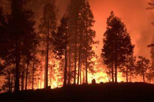 Portada-Incendios-en-Californiamin
