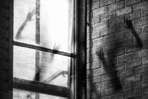 Portada-Maldad-Foto Thomas Willmott-(@tcwillmott)-Unsplash-1600x-(1)-(2)