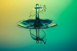 Portada-Tequila-Foto Dirk Wohlrabe-Pixabay-1600x-(6)-(6)